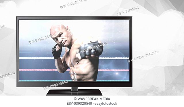 mixed martial arts fighter on television