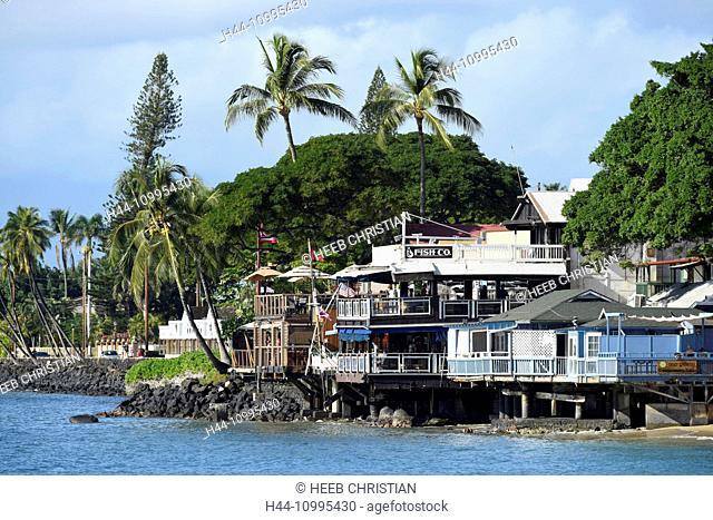 USA, Vereinigte Staaten, Amerika, Hawaii, Maui, island, Lahaina, Fish Company