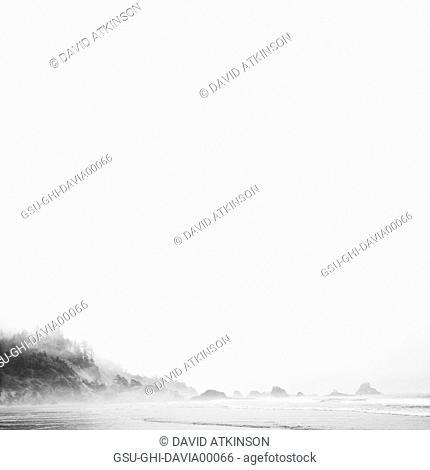 Misty Coast, Indian Point Beach, Ecola, Oregon, USA