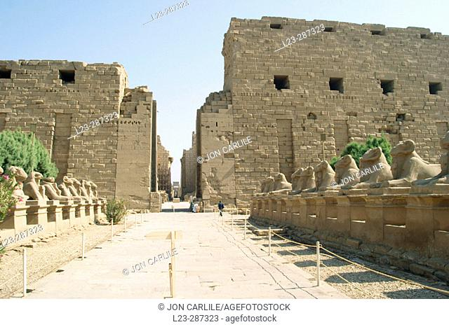 Statues of rams, ruins of temple. Karnak. Egypt