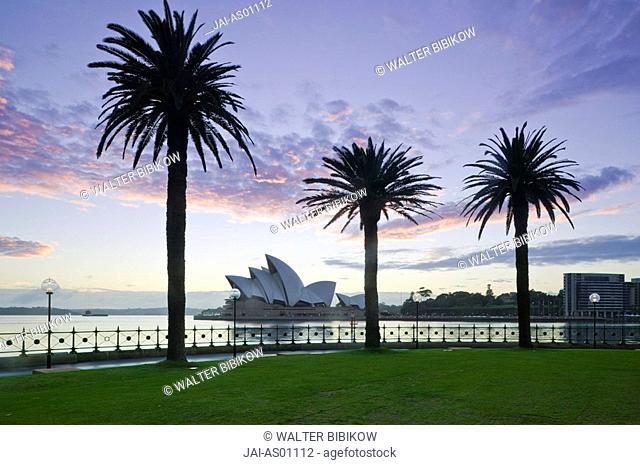 Australia, New South Wales, Sydney, Sydney Opera House through palms