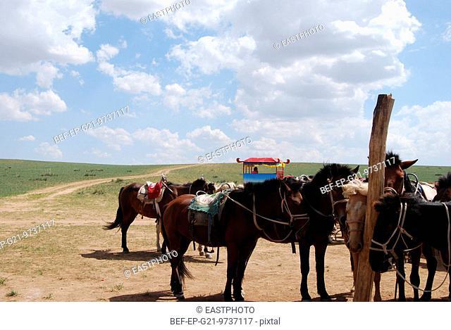 The scenery of the landscape types: sheila MuRen grassland of Inner Mongolia