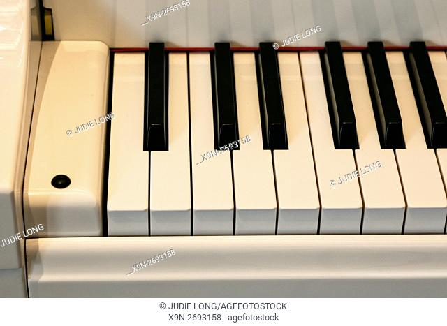 Close Up of a Baby Grand Piano Keyboard, Partial View, Seen from Above