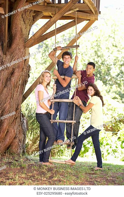 Group Of Teenage Friends By Treehouse