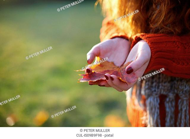 Cropped view of woman holding autumn leaf in palm of hands