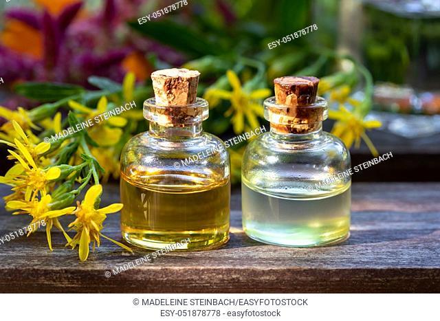 Two bottles of essential oil with fresh European goldenrod, or Solidago virgaurea flowers