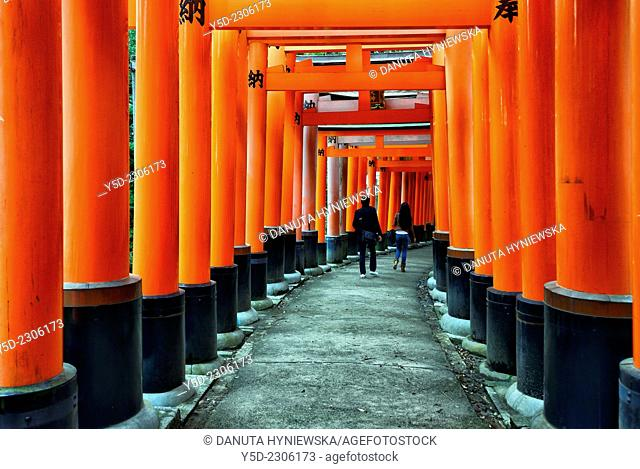 Torii gates path, Fushimi Inari-taisha Shrine, head shrine of Inari located in Fushimi-ku, Kyoto, Kansai Region, Japan