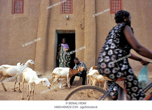 Mali, Mopti Region, Djenne, listed as World Heritage by UNESCO, traditional house