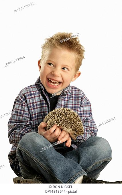 Boy holding hedgehog