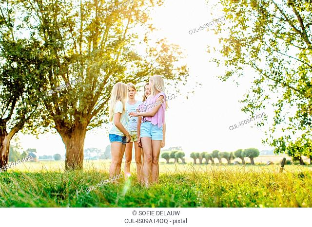 Girls chatting on field, Flanders, Belgium