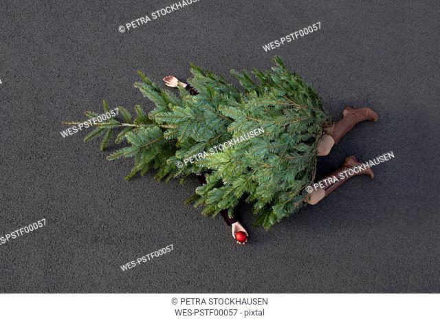 Woman lying buried under Christmas tree