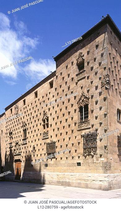 Casa de las Conchas. Salamanca. Spain