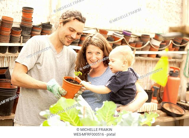 Smiling family of three in greenhouse with flowerpot
