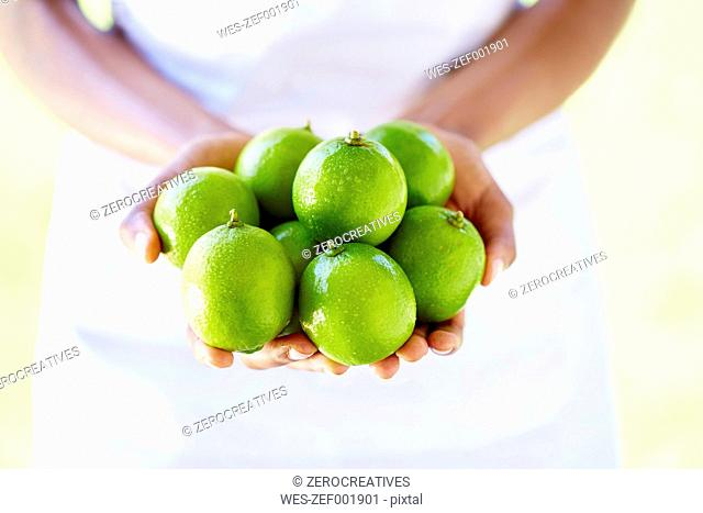 Woman's hands holding limes