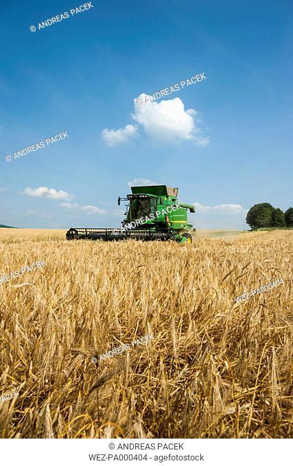 Germany, Rhineland-Palatinate, Rhineland-Palatinate, Combine harvester on barley field