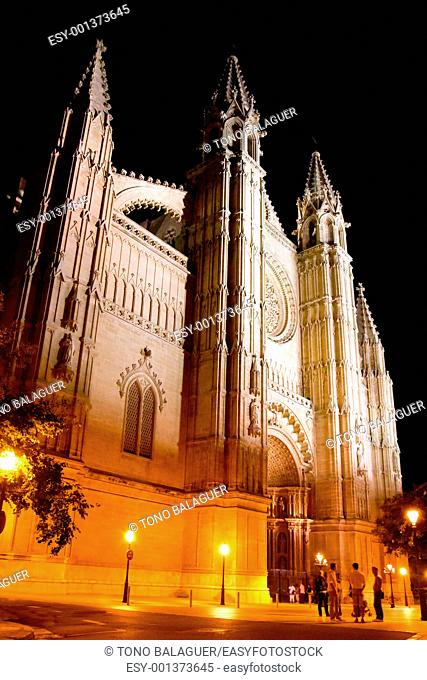 Cathedral of Palma de Mallorca La Seu night view perspective Majorca Balearics
