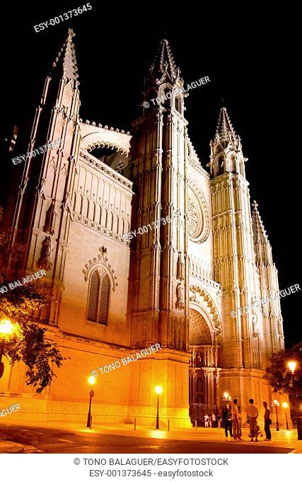 Cathedral of Palma de Mallorca La Seu night view perspective Majorca Balearics
