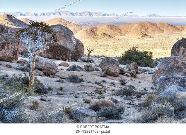 Richtersveld National Park; South Africa