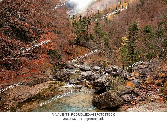 Landscape with the Arazas riverfrom the Arripas bridge. Ordesa y MOnte Perdido national park. Huesca