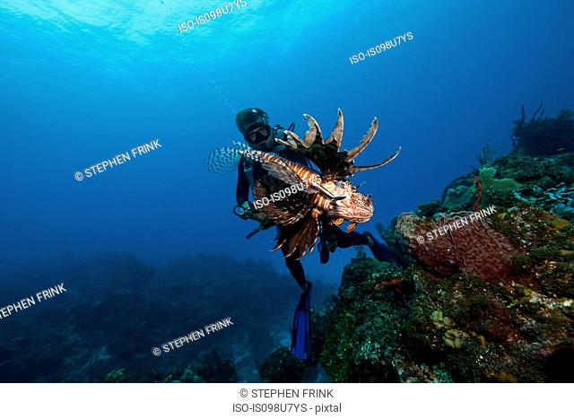 Diver and Invasive Species