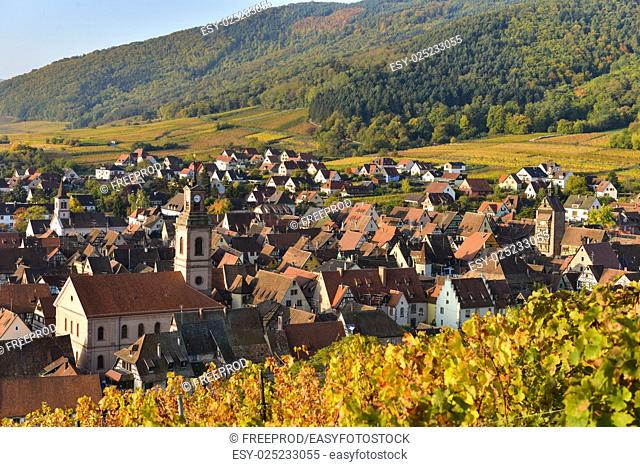 Alsace village, with vineyard, Riquewhir. France, Europe