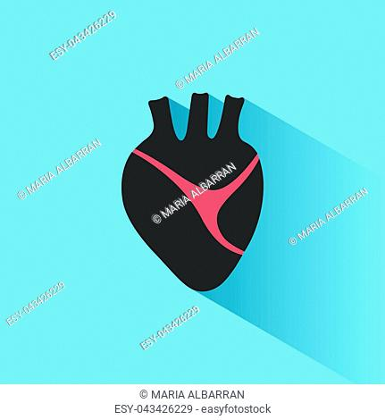 Human heart icon with shade on a blue background. Vector illustration