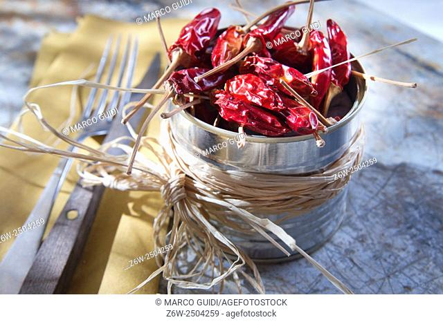 Presentation of the ingredient prince of the kitchen, dried chili