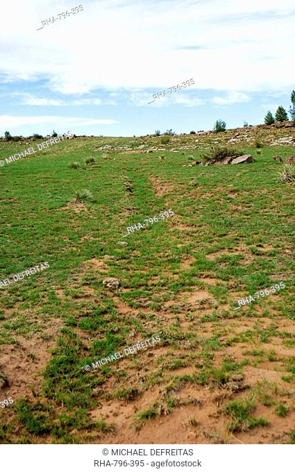 Wagon ruts at Fort Union National Monument and Santa Fe National Historic Trail, New Mexico, United States of America, North America