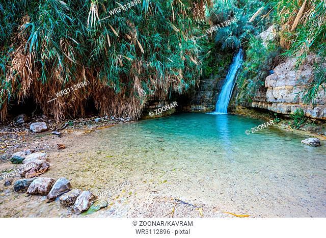 The national park Ein Gedi, Israel
