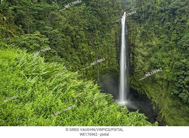 Akaka Falls in Akaka Falls State Park, Hamakua Coast, Island of Hawaii
