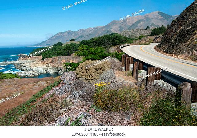 California Highway 1 curves along a mountainous shoreline amid a variety of plants that grow in the dry coastal climate south of Carmel