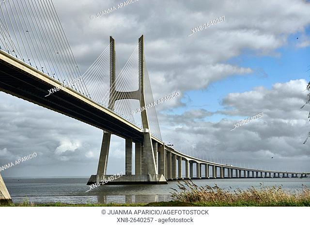 Vasco da Gama bridge over the Rio Tejo river in the Parque das Nações park, site of the Expo 98, Lisbon, Portugal, Europe