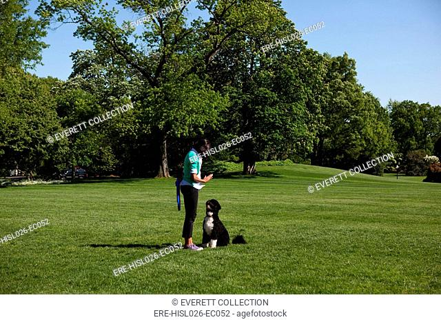 First Lady Michelle Obama gestures to Bo the Obama family dog on the South Lawn of the White House April 29 2010., Photo by: Everett CollectionBSLOC-2011-7-8