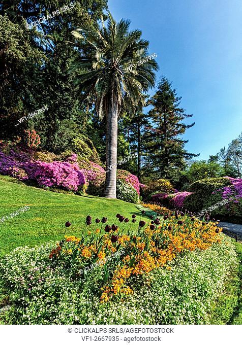 Villa Carlotta , botanic garden, Tremezzina, Como Lake, Lombardy, Italy