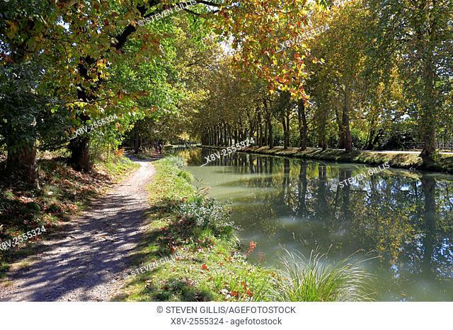 Canal du Midi, Carcassonne, Aude, Languedoc, Roussillon, France
