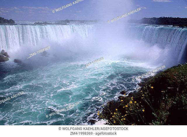 CANADA, ONTARIO, NIAGARA RIVER, NIAGARA FALLS, HORSESHOE FALLS, FLOWERS IN FOREGROUND