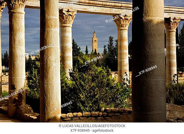 Tunez: El Jem Archeological Museum Reconstitution of a roman house