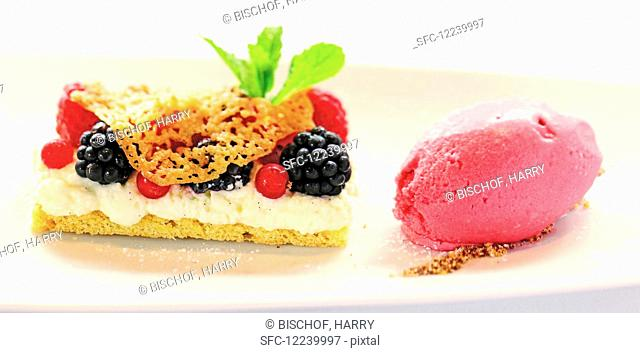 A berry slice with raspberry ice cream