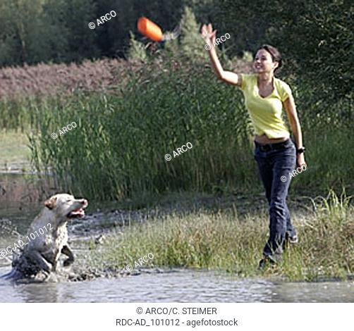 Woman and Labrador Retriever doing dummy training