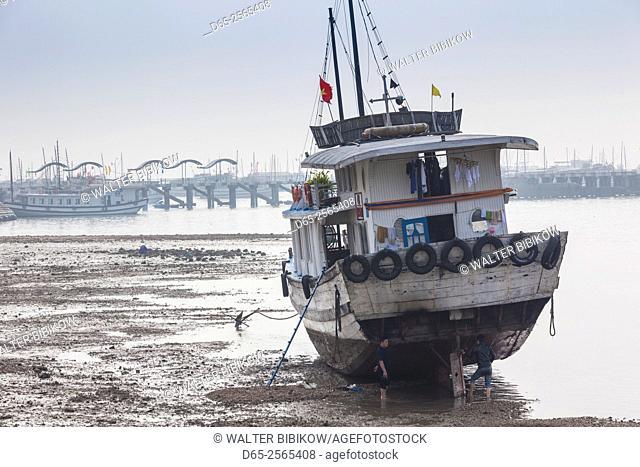 Vietnam, Halong City, Bai Chay port, Halong Bay tourist boats, morning