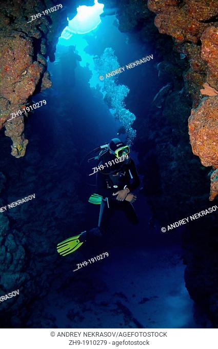 Diver diving in dive-site Canyon, Dahab, Red Sea, Egypt, Africa