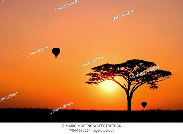 Hot Air Balloons at Sunrise in the Serengeti National Park, Tanzania