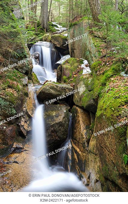 Small gorge along Cascade Brook in the Flume Gorge Scenic Area in Lincoln, New Hampshire USA during the spring months. This area is part of Franconia Notch...
