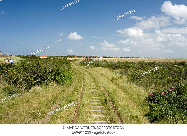 Railroad tracks from historic horse-drawn train and view on village of Spiekeroog  East Frisian Island  North Sea  Germany
