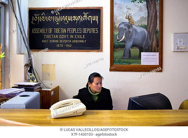 Receptionist of Assembly of Tibetan People's Deputies, Dharamsala, Himachal Pradesh state, India, Asia