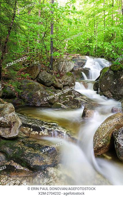 Clough Mine Brook, a tributary of Lost River, in Kinsman Notch of Woodstock, New Hampshire USA during the spring months