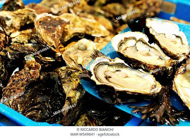 mercato del pesce di rochefort, francia