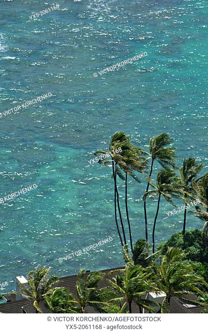 Aerial view of the roof of a house on the ocean shore in Honolulu, Hawaii