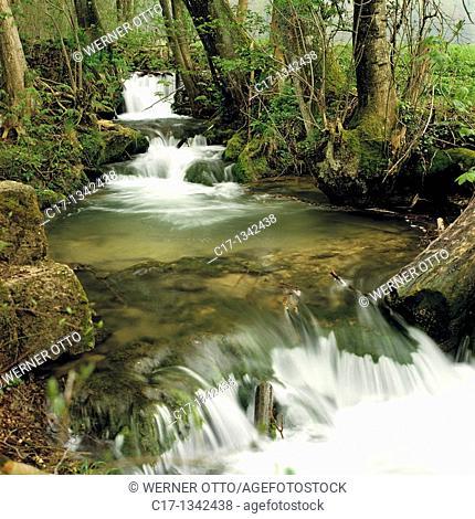 Germany, Bad Urach, Erms, Erms Valley, Swabian Jura, Baden-Wuerttemberg, woodland scenery, Bruehlbach brook in the Maisen Valley, waterfall, rapids