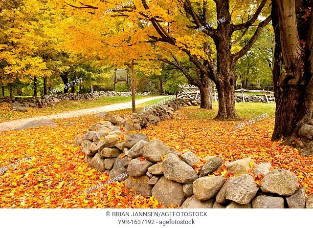 Autumn view of the famous Battle Road between Lexington and Concord - Lincoln Massachusetts USA